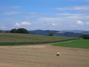 Bursinel - Estavayer-le-lac (08.08.2014)